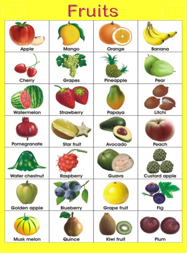 Fruits name chart