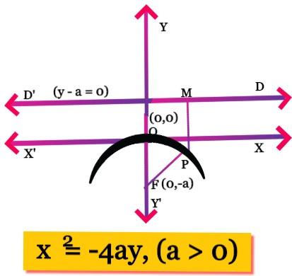 Downward Parabola Equation