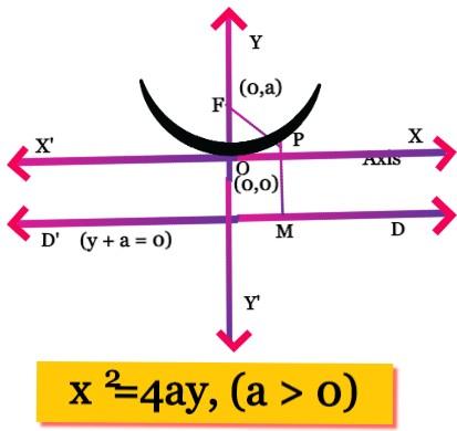 Upward Parabola Equation