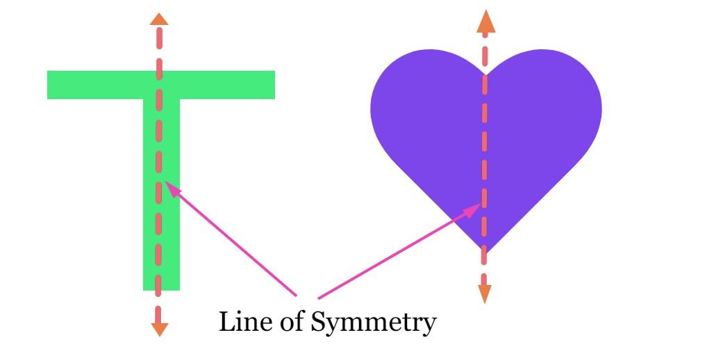 Line of Symmetry